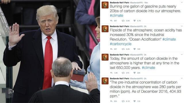 (Image source: AP/Twitter)