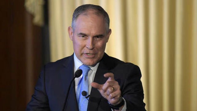 EPA head rejects pesticide ban recommended by agency
