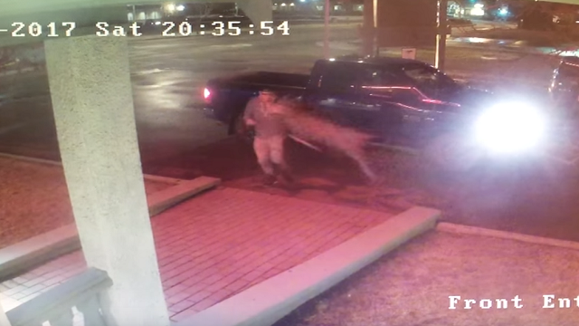 Deer Tackles Canadian Rapper Outside Hotel