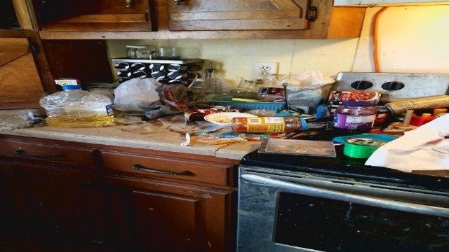 Parents arrested after children found living in filthy, animal-hoarding home
