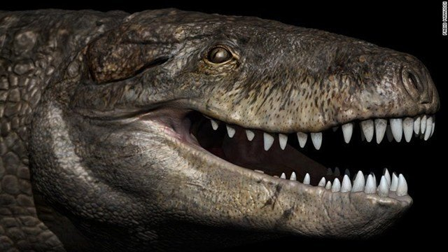 Humongous Prehistoric Crocodile Had T. Rex Teeth For Chewing Through Bone