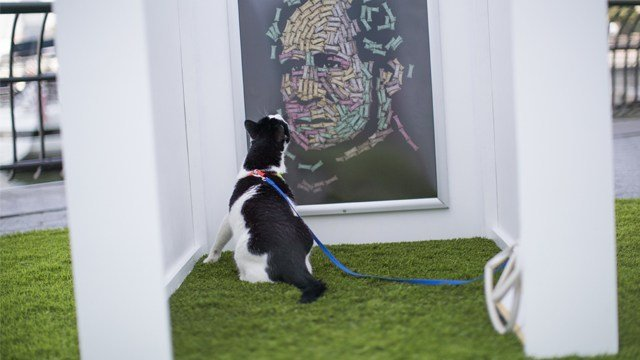 """Bug, a domestic short hair cat, inspects Noah Scalin's """"The Hand That Feeds"""" at Dogumenta (I) NYC, Friday, Aug. 11, 2017, in New York. The art show, featuring 10 sculptures and installations created specifically for dogs. (AP Photo/Mary Altaffer)"""