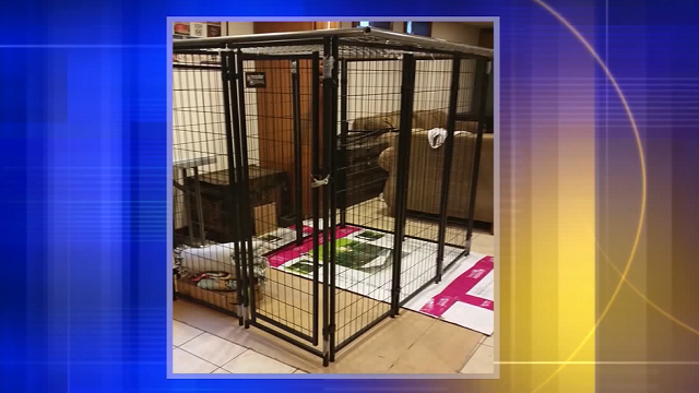 A grandmother and another adult are accused of keeping her 9-year-old granddaughter padlocked inside a dog kennel in a house in southeastern Wisconsin. (Source: Racine County Sheriff's Office)