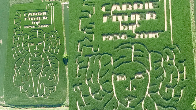 Carrie Fisher Gets a Crazy Princess Leia Corn Maze Tribute