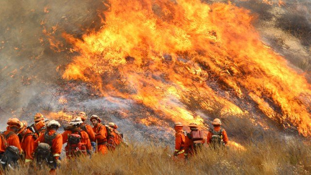 """A crew with California Department of Forestry and Fire Protection (Cal Fire) battles """"La Tuna"""" brushfire on the hillside in Burbank, Calif., Saturday, Sept. 2, 2017. (Matt Hartman via AP)"""