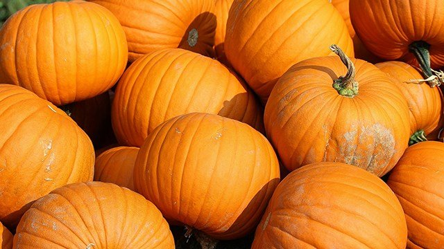 Pumpkin Spice Overload: Hazmat team called in for Pumpkin Spice air freshener