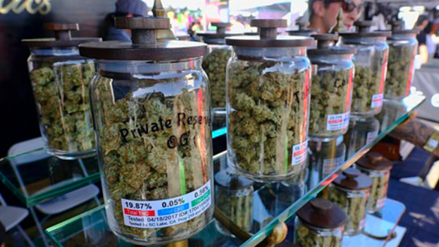 (AP Photo/Richard Vogel, File). FILE - In this April 23, 2017, file photo, large jars of marijuana are on display for sale at the Cali Gold Genetics booth during the High Times Cannabis Cup in San Bernardino, Calif.