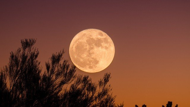 Supermoon expected in skies above Gedling borough on Sunday