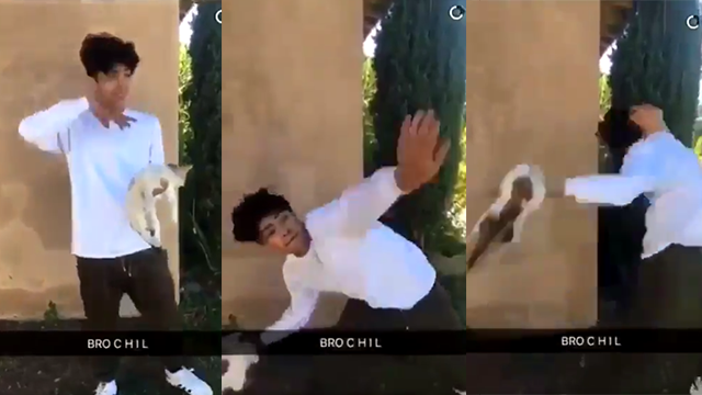 Police investigating video of boy throwing cat onto street
