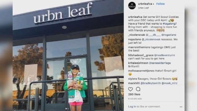Girl Scouts looking into cookie seller outside pot shop