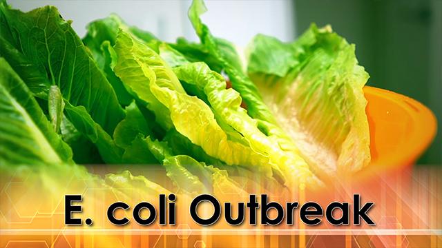 One Person Dies/Romaine Lettuce E-Coli Outbreak