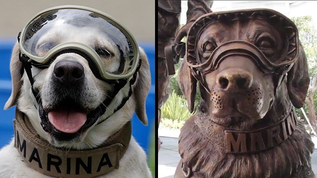 (Left) Frida, a dog trained to search for people trapped inside collapsed buildings, wears protective gear during a press event in Mexico City Sept. 28, 2017. (AP Photo/Rebecca Blackwell). (Right) Frida's statue. (CNN)