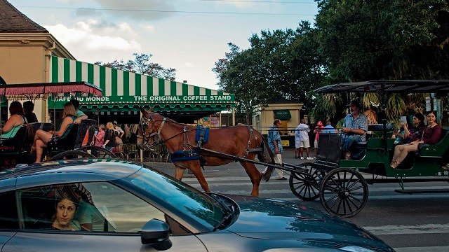 Tourists in cars and horse drawn buggies pass the Cafe du Monde in the French Quarter of New Orleans, Saturday, Aug. 15, 2015. (AP Photo/Max Becherer)
