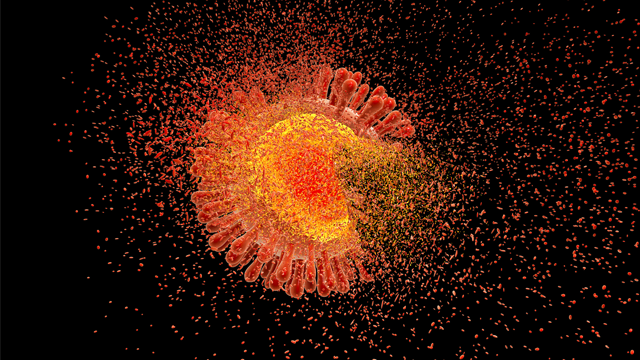 Destruction of Human Immunodeficiency Virus (HIV), computer illustration. Conceptual image for HIV-infection and AIDS treatment and prevention. (Getty Images)