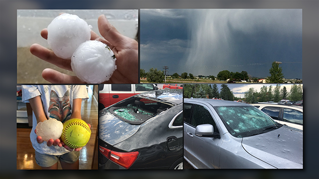 Hail at Colorado Springs Zoo Injures 8 People, Kills 3 Animals
