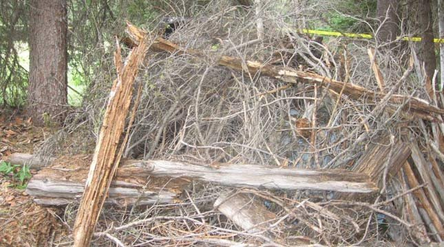 James DiMaggio camouflaged his car in brush, twigs, and logs in the Frank Church River of No Return Wilderness.