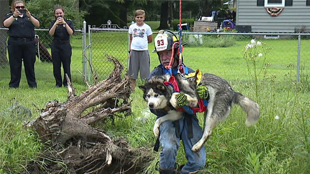 Emergency crews were able to rescue a dog that fell into a sinkhole in Old Forge, Penn. (WNEP via CNN)